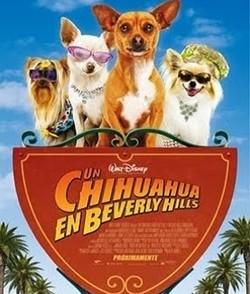 UnchihuahuaenBeverlyHills1.jpg