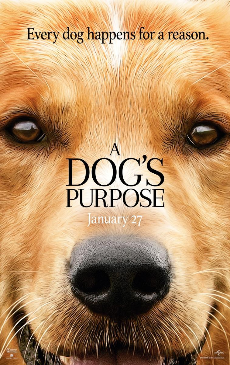 la-razon-de-estar-contigo-a-dogs-purpose-2017-peliculasmas.jpg